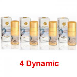 4-dynanic